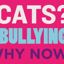 Why Cats? Why Bullying? Why Now?